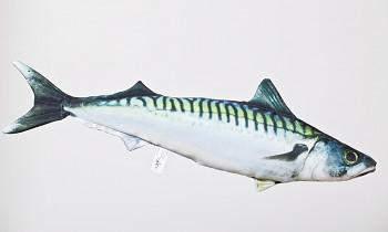 Makrela - 50 cm polštářek