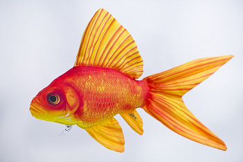 Zlatá rybka  - 60 cm polštářek