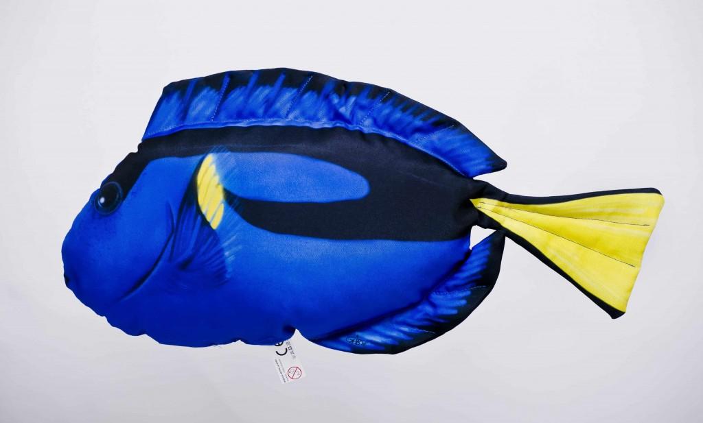 Bodlok pestrý - 56 cm polštářek