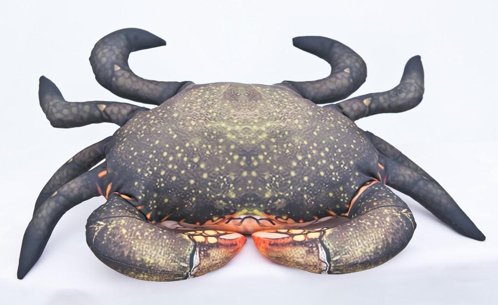 Krab bahenní - 60 cm polštářek